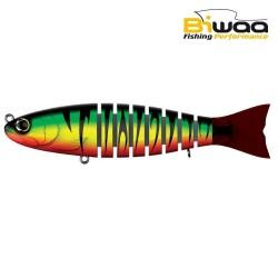 S'trout Biwaa